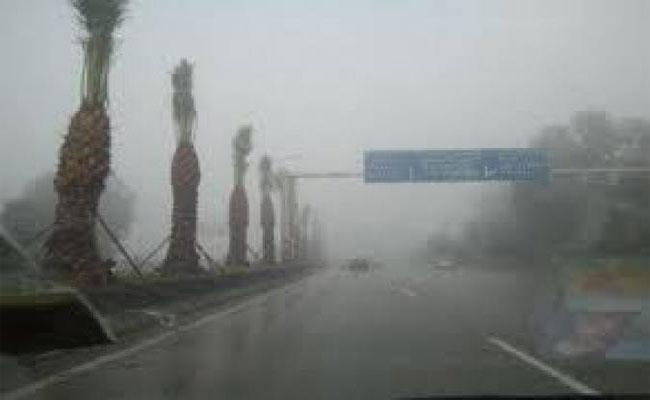 أمطار غزيرة بداية من اليوم إلى الـ3 صباحا من يوم غد الأحد بولاية بشار
