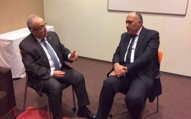 وزير الشؤون الخارجية المصري يعرب عن
