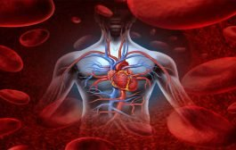 طرق صحية بسيطة وتتخلّصون من ضعف الدورة الدموية!