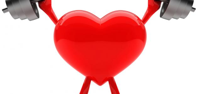 لماذا تضعف عضلات القلب؟