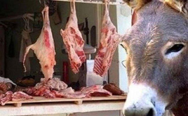 في شهر رمضان حيث يزداد الطلب على اللحوم الحمراء : العثور على رؤوس حمير وبقايا أحشائهم بتيزي وزو !