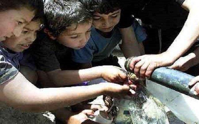 ستقع كارثة إنسانية بغزة بسبب نقص إمدادات المياه