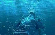 سبب غريب لإنتحار زوجين في المسبح