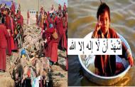 في صمت رهيب للعالم ولمنظمات حقوق الإنسان والحيوان مسلمو بورما سينقرضون