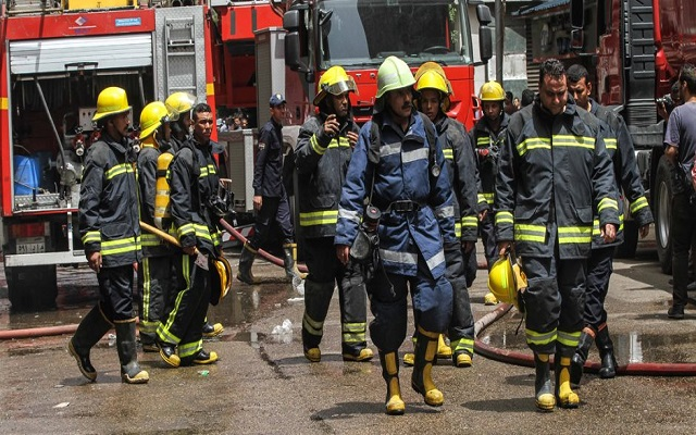 ببغاء يتسبب باستدعاء رجال الإطفاء