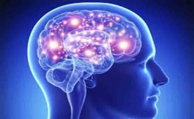 ما هي المواد الغذائية التي تحسّن عمل الدماغ؟