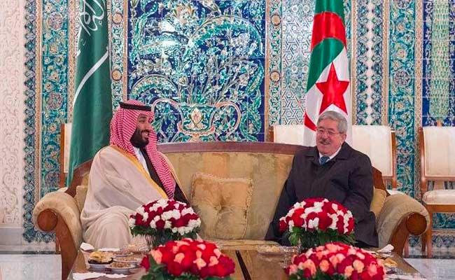 اتفاق الجزائر و السعودية على إنشاء مجلس أعلى للتنسيق بين البلدين