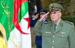 قايد صالح يؤكد أن حل الأزمة السياسية يكمن في تطبيق المادة 102من الدستور