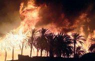 حريق مهول في بشار يتلف 150 نخلة، و السبب مازال مجهولا