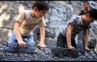 تصنيف الجزائر ضمن ال 16 دولة عالميا التي حققت تقدما معتبرا في مجال القضاء على عمالة الأطفال