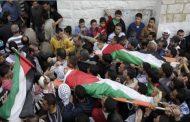 انها الحقيقة اخي المواطن كل سيجارة تدخنها فأنت تساهم بقتل الفلسطينيين !!!