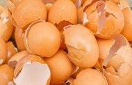 5 استخدامات جمالية مذهلة لقشر البيض