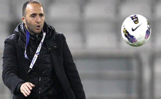 بلماضي أفضل مدرب في قطر