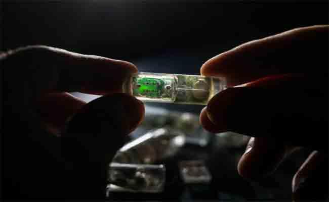 مجموعة من الباحثون يصممون حبة مضيئة لمعاينة الجهاز الهضمي