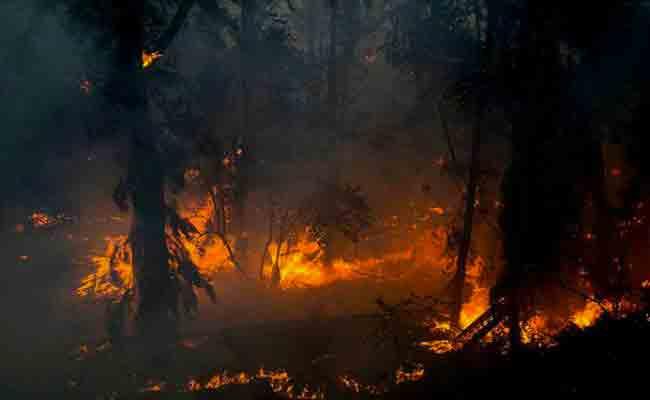 حملة تحسيسية لتوعية مستعملي الطريق حول مكافحة حرائق الغابات بالعاصمة