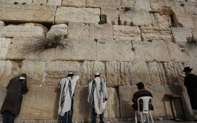 ثعبان يخرج من حائط البراق هل هي إشارة على قرب قدوم المسيخ الدجال