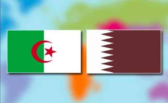 العلاقات الجزائرية / القطرية : دعوة لتفعيل شراكة حقيقية بين البلدين