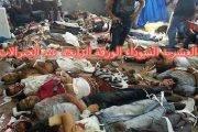 يا قايد صالح لا تضع الاستقرار في كف والمطالبة بالعيش الكريم والمساوات في الكف الأخر