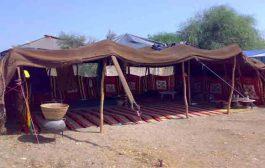 مجلس ادارة المركز الاقليمي لحماية التراث الثقافي غير المادي يعقد أولى اجتماعاته السبت المقبل