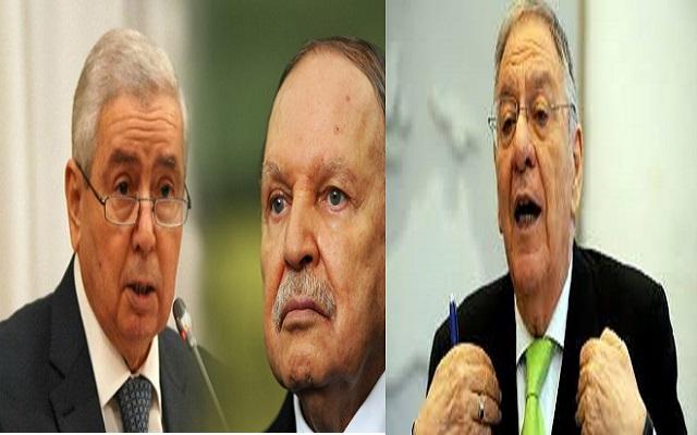 بن صالح أنا مكره لا بطل وجمال ولد عباس أنا الزعيم