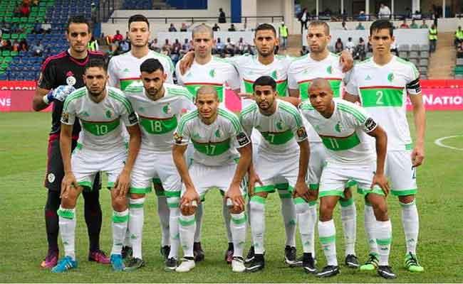 الطريق الصحيح للخضر في كأس افريقيا