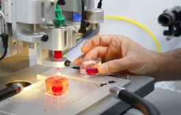 هذا القلب تم طباعته بطابعة ثلاثية الأبعاد بخلايا بشرية