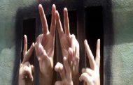 مذكرات مثقف و شيكور في بلاد ميكي / الحلقة السادسة :  في سبيل الحرية والعيش الكريم لابد من التضحيات