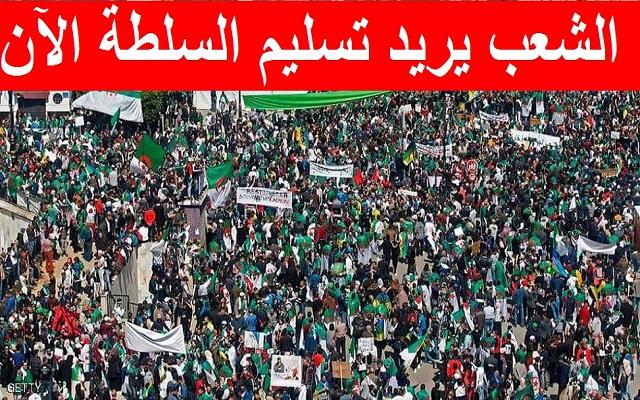 يا قايد صالح خدعة الاعتقالات لن تنطلي علينا يجب أن تسلم السلطة للشعب
