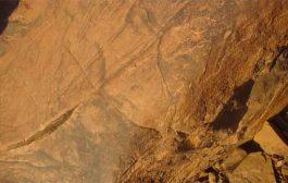 وهران تحتضن معرض حول الفن الصخري الى غاية 31 يوليو...