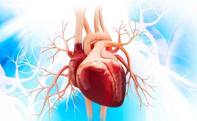 هل الحمل ممكن وآمن لمريضة القلب...؟