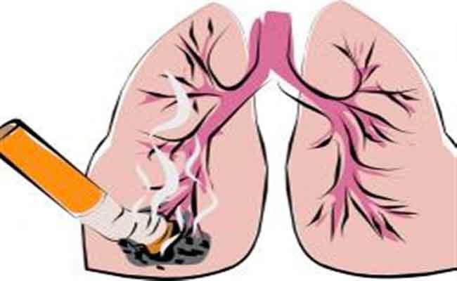 تعرّفوا على البدائل التي من المحتمل أن تحدّ من تأثيرات التدخين على الصحّة...