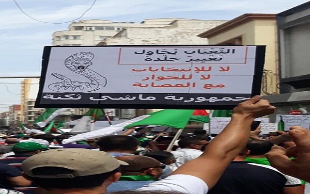 الشعب الجزائري يرفع هالة القداسة عن القايد صالح