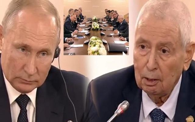 فضيحة عالمية رئيس البلاد وفي قمة الذل يطمان بوتين على مزرعته (الجزائر)