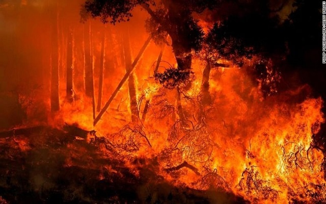 حالة طوارئ في كاليفورنيا مع انتشار الحرائق