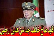 القايد صالح خائف ويتخبط وأقال عشرات الجنرالات الكبار المقربين منه