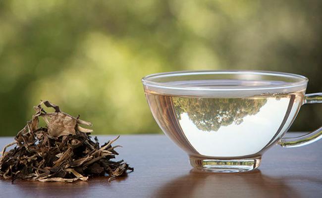 فوائد الشاي الابيض في التنحيف ستذهلكِ من دون شكّ...!