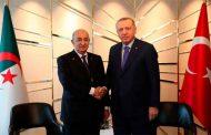تبون يجري محادثات مع نظيره التركي أردوغان