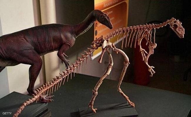 هذه هي النتائج مهمة عن الكويكب الذي أباد الديناصورات...