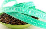 ما هي قهوة التخسيس؟وكيف تساعد في إنقاص الوزن...؟