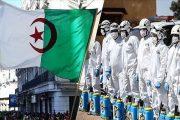 هل وصل وباء كورونا مرحلة الذروة في الجزائر