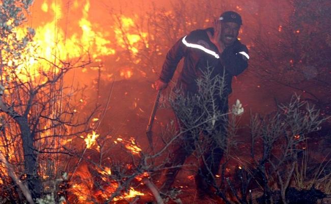 في أول أيام العيد 10 حرائق كبيرة تشتعل في الجزائر