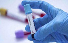 ارتفاع عدد المصابين بكورونا إلى 689 19 بعد تسجيل 494 حالة جديدة