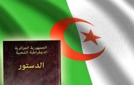 نصير عنان : التصويت بنعم على الدستور