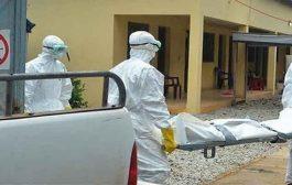 كورونا تكلف قطاع الصحة وفاة 120 مهني و إصابة أزيد من 9 آلاف آخرين منذ ظهور الوباء