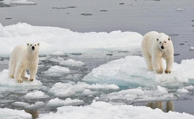 العالم يتجه نحو تغير مناخي حاد