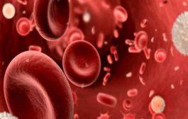 ما هي أسباب نقص الصفائح الدموية عند الحامل؟...