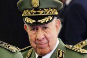 الجنرال شنقريحة الجزائر لا تحتاج لقاح كورونا لأنها تحتاج العملة الصعبة