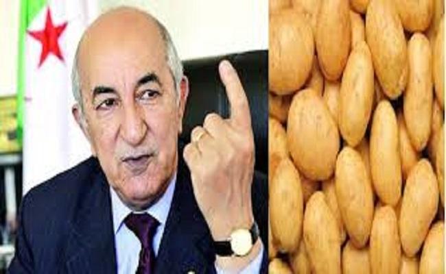 الجزائر ستصدر البطاطس بدل الغاز والبترول