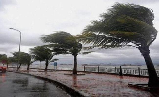تحذير من أمطار رعدية ورياح قوية على الولايات الشمالية والجنوبية