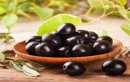 لماذا يُعتبر تناول الزيتون مفيداً خلال الرجيم؟